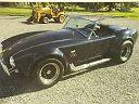 usado Ford Cobra