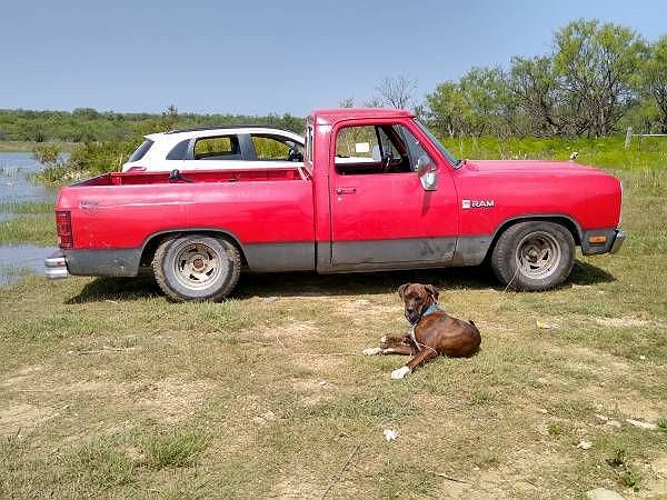 1982 Dodge Ram 150